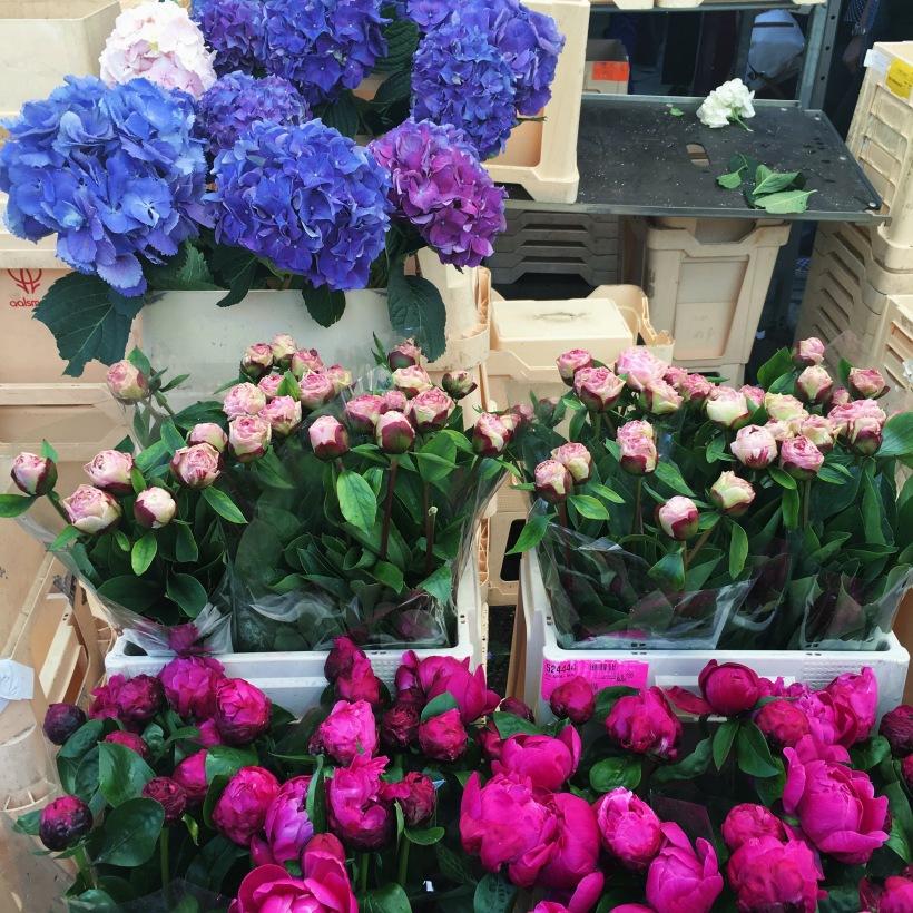 My love affair with flowers