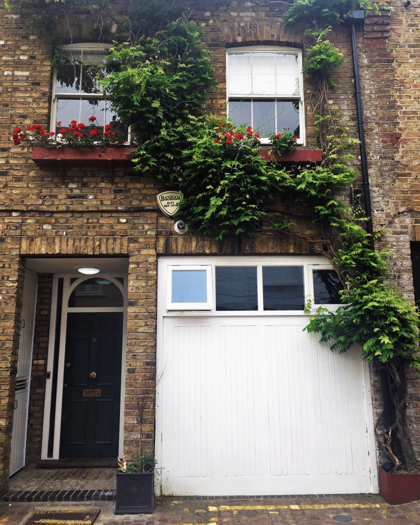 Mewsing around South Kensington.